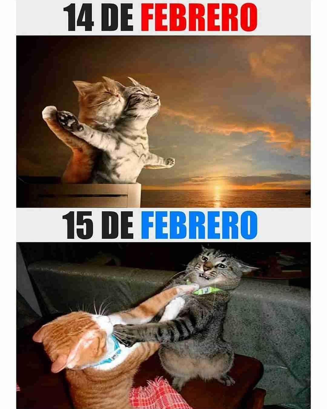14 de Febrero. / 15 de Febrero.