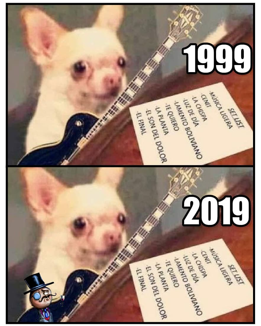 1999 / 2019.