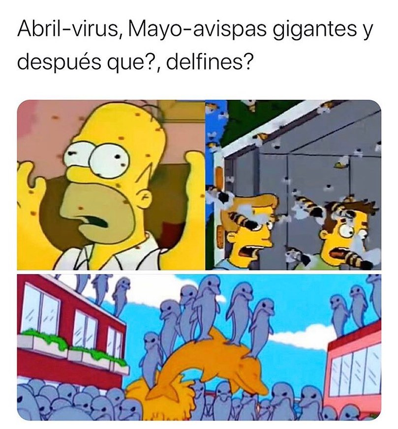 Abril-virus, Mayo-avispas gigantes y después que? , delfines?