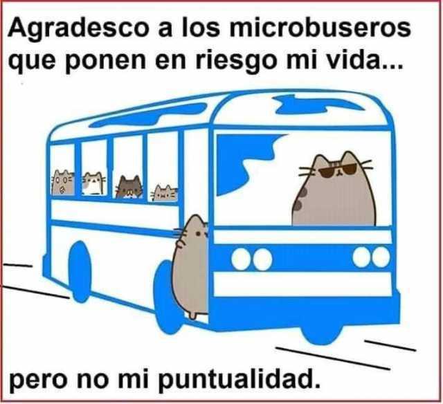 Agradesco a los microbuseros que ponen en riesgo mi vida... pero no mi puntualidad.