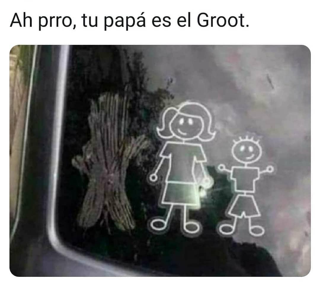 Ah prro, tu papá es el Groot.