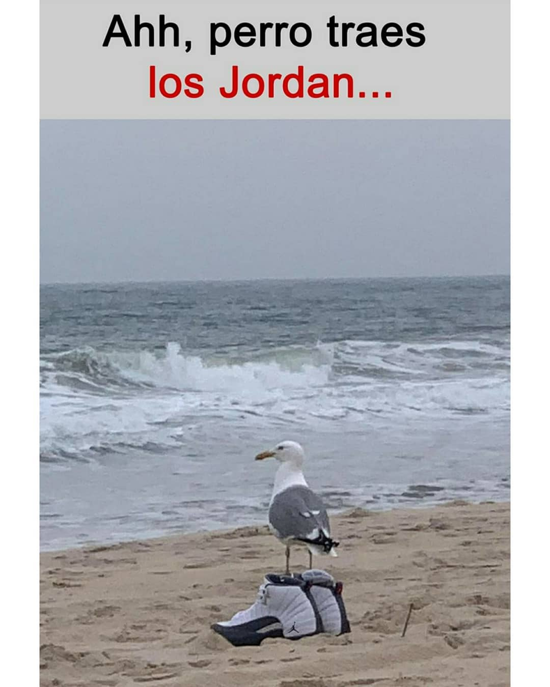 Ahh, perro traes los Jordan...