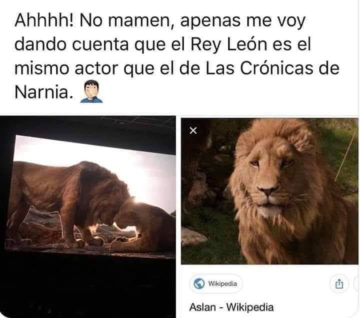 Ahhhh! No mamen, apenas me voy dando cuenta que el Rey León es el mismo actor que el de Las Crónicas de Narnia.