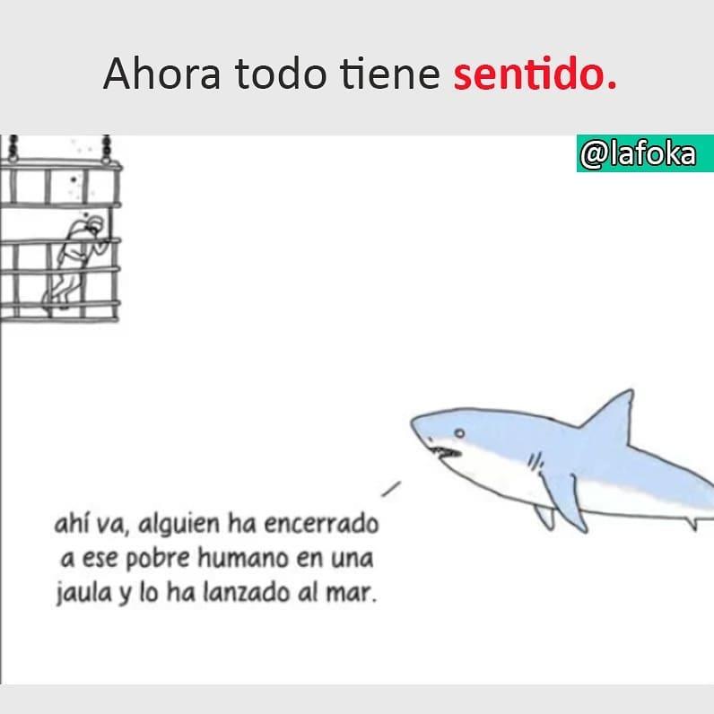 Ahora todo tiene sentido.  Ahí va, alguien ha encerrado a ese pobre humano en una jaula y lo ha lanzado al mar.