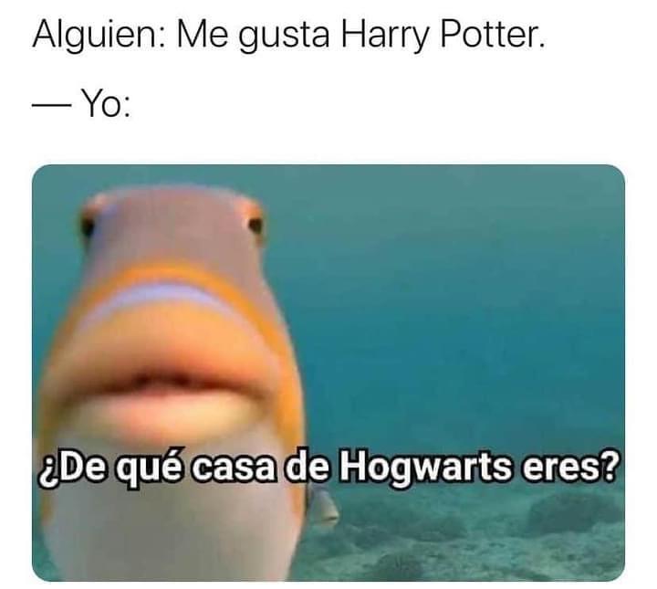 Alguien: Me gusta Harry Potter.  Yo: ¿De qué casa de Hogwarts eres?