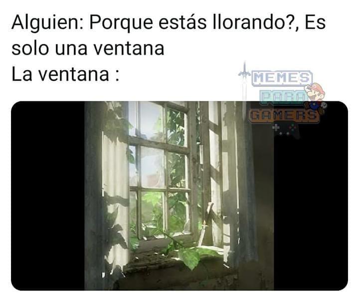 Alguien: Porque estás llorando? Es solo una ventana.  La ventana.