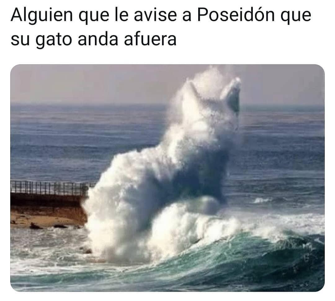 Alguien que le avise a Poseidón que su gato anda afuera.