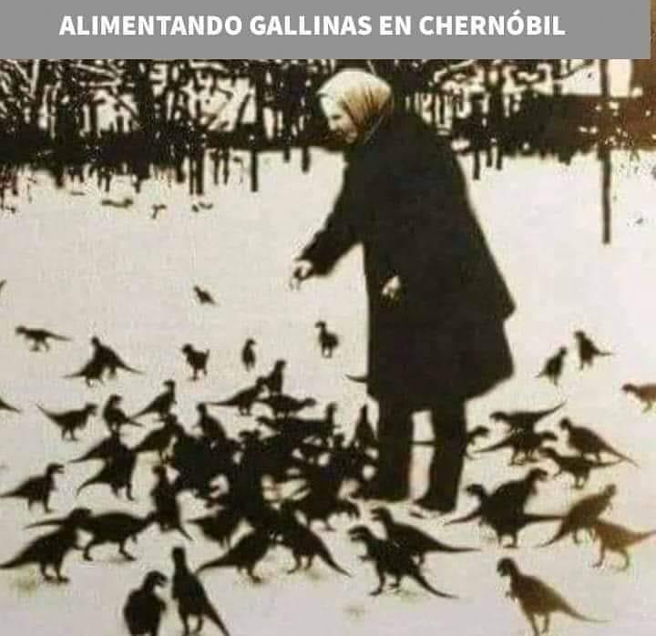 Alimentando gallinas en Chernóbil.