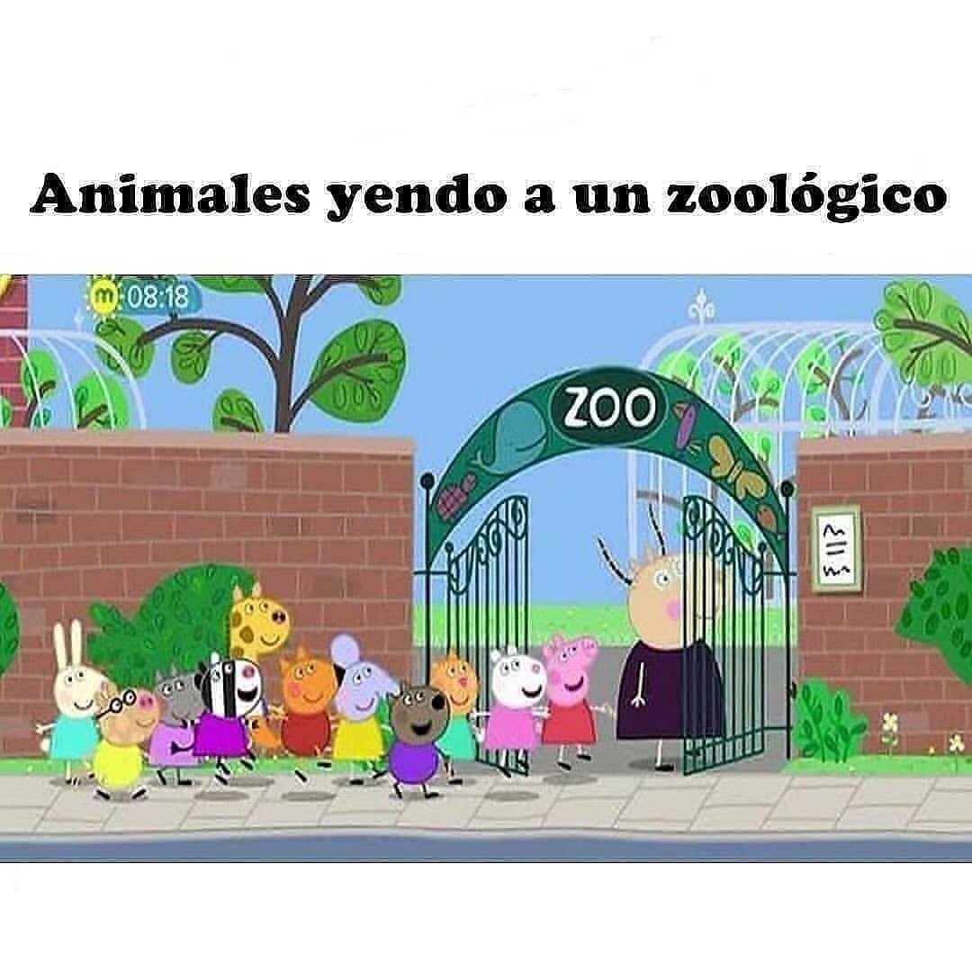 Animales yendo a un zoológico.