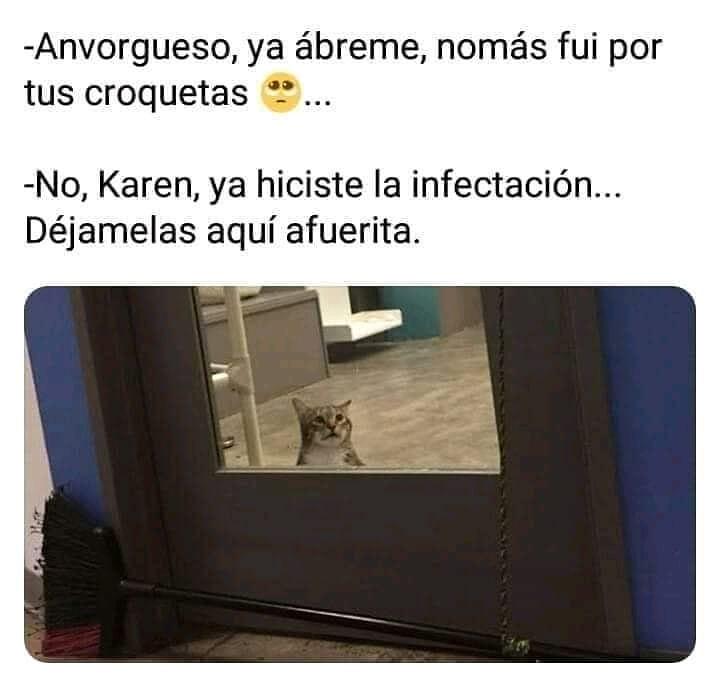 Anvorgueso, ya ábreme, nomás fui por tus croquetas.  No, Karen, ya hiciste la infectación...  Déjamelas aquí afuerita.