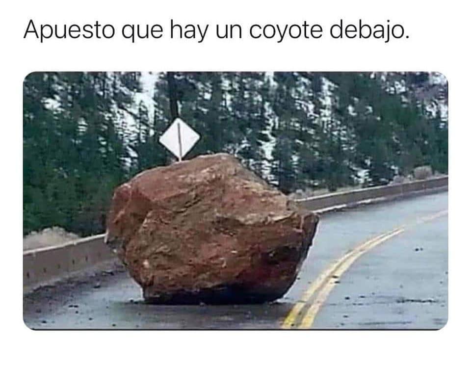 Apuesto que hay un coyote debajo.