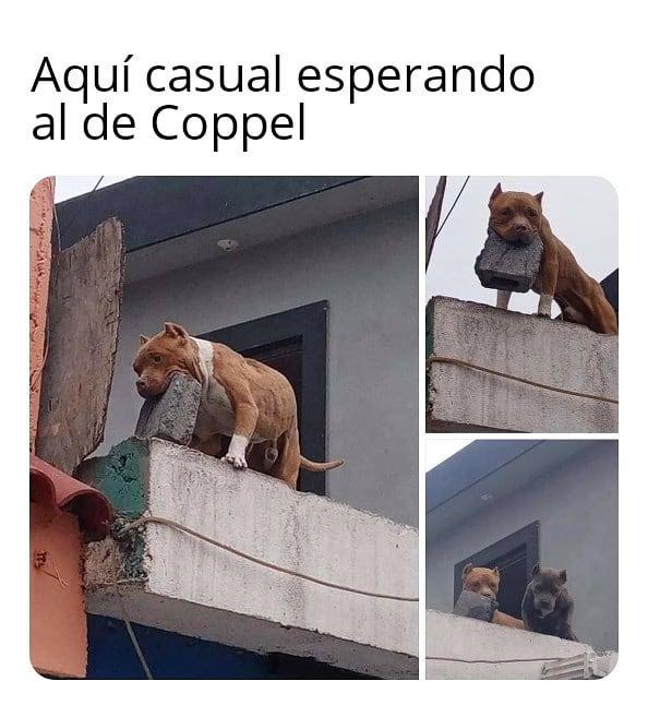 Aquí casual esperando al de Coppel.