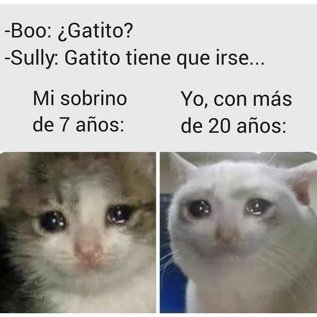 Boo: ¿Gatito?  Sully: Gatito tiene que irse...   Mi sobrino de 7 años:  Yo, con más de 20 años: