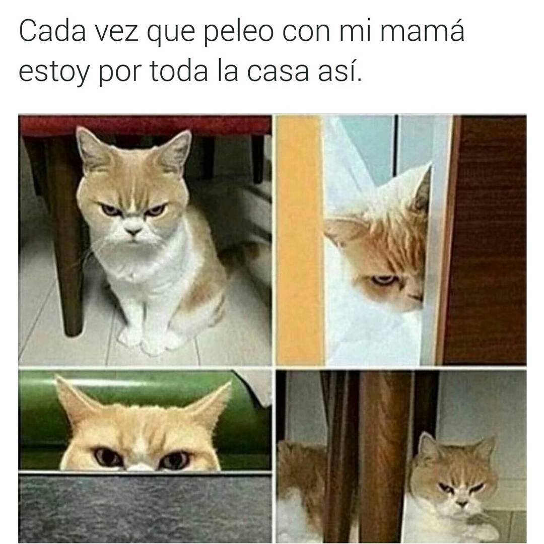 Cada vez que peleo con mi mamá estoy por toda la casa así.