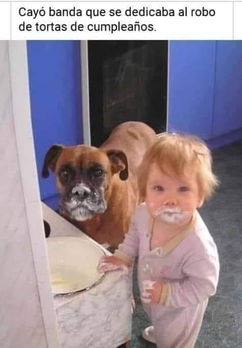Cayó banda que se dedicaba al robo de tortas de cumpleaños.