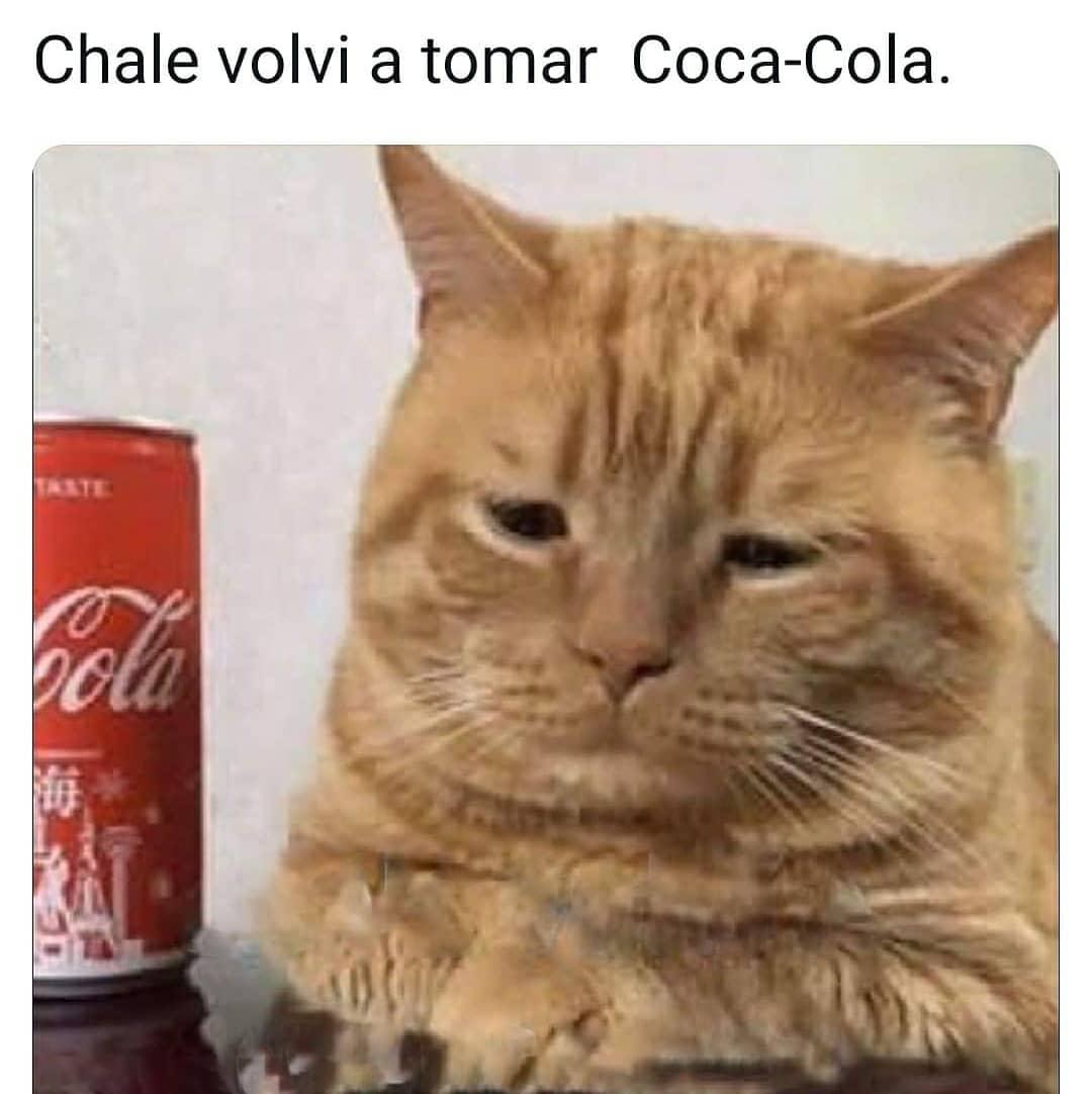 Chale volví a tomar Coca-Cola.