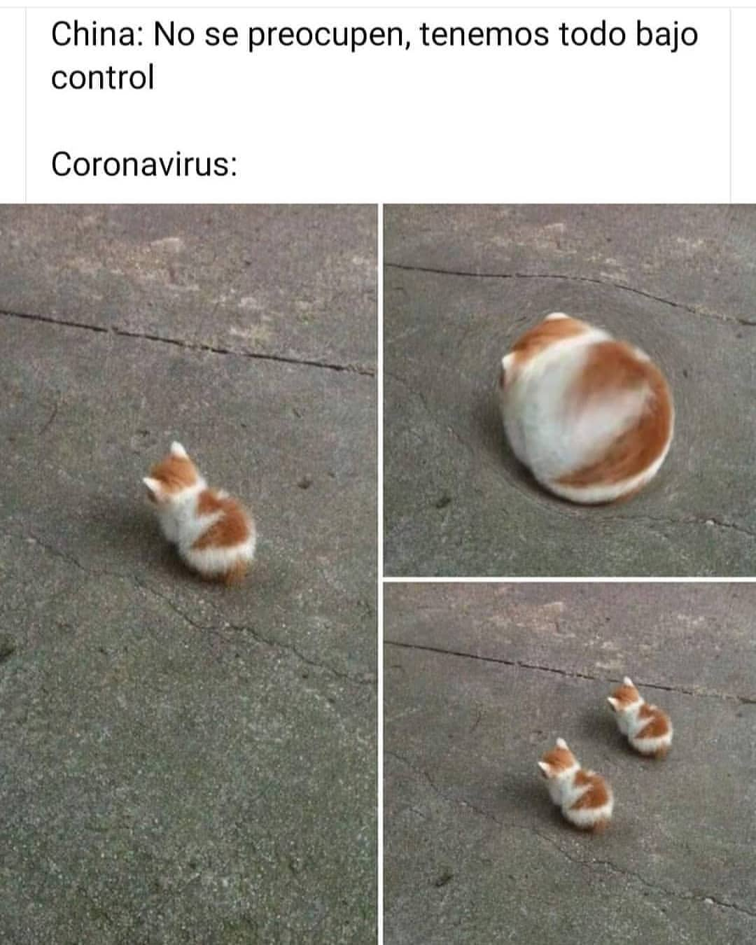 China: No se preocupen, tenemos todo bajo control.  Coronavirus: