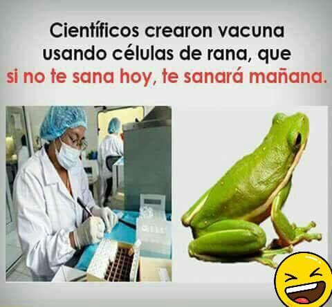 Científicos crearon vacuna usando células de rana, que si no te sana hoy, te sanará mañana.