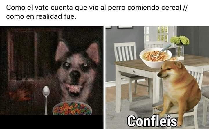 Como el vato cuenta que vio al perro comiendo cereal. // Como en realidad fue. Confleis.