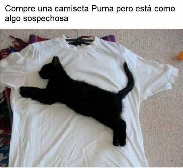 Compré una camiseta Puma pero está como algo sospechosa.