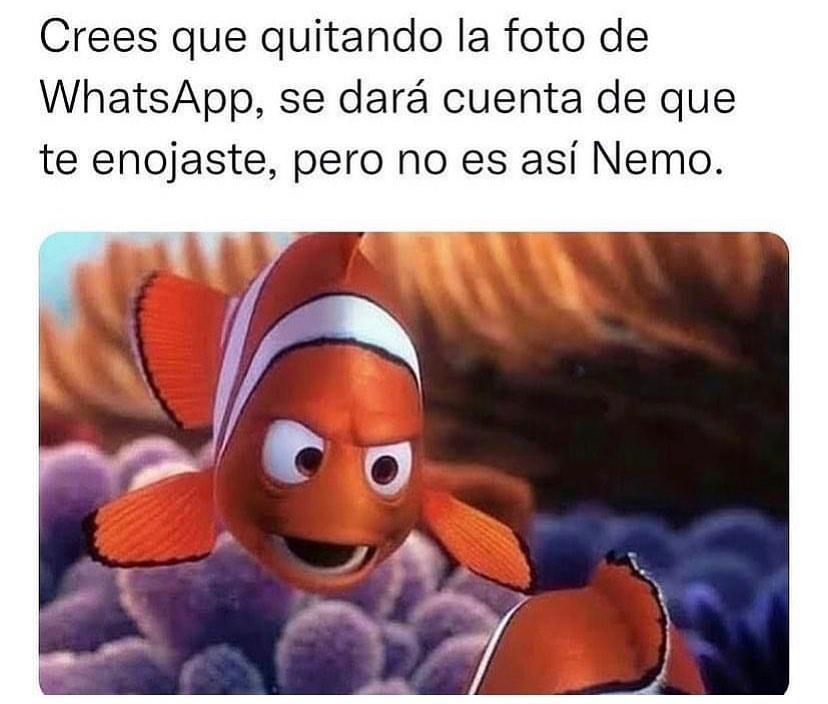 Crees que quitando la foto de whatsapp, se dará cuenta de que te enojaste, pero no es así Nemo.