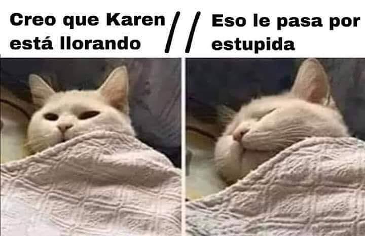 Creo que Karen está llorando. / Eso le pasa por estúpida.