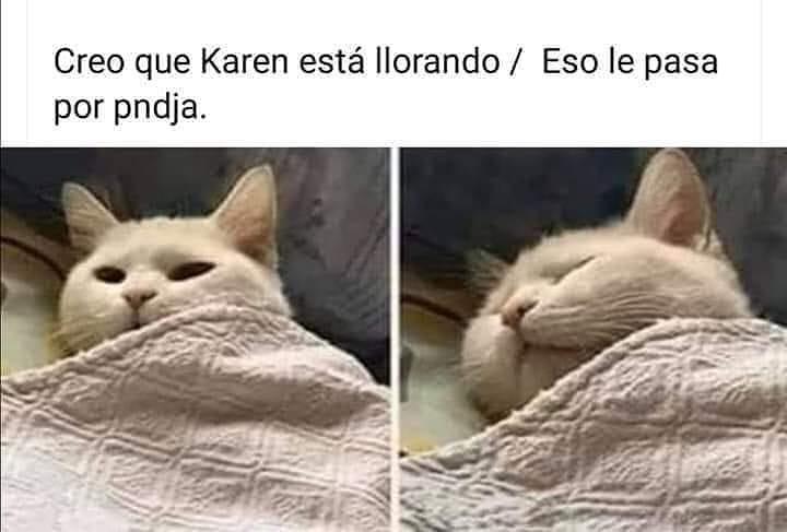 Creo que Karen está llorando. / Eso le pasa por pndja.