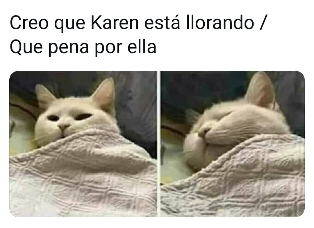 Creo que Karen está llorando. / Que pena por ella.
