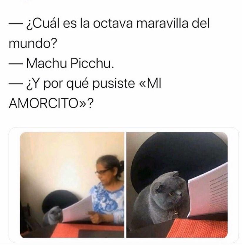 """¿Cuál es la octava maravilla del mundo?  Machu Picchu.  ¿Y por qué pusiste """"mi amorcito""""."""