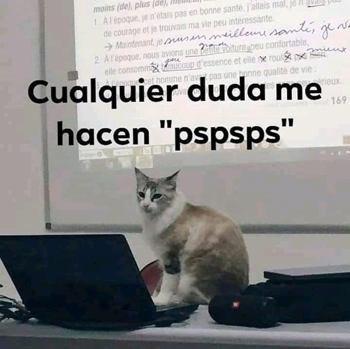 "Cualquier duda me hacen ""pspsps""."