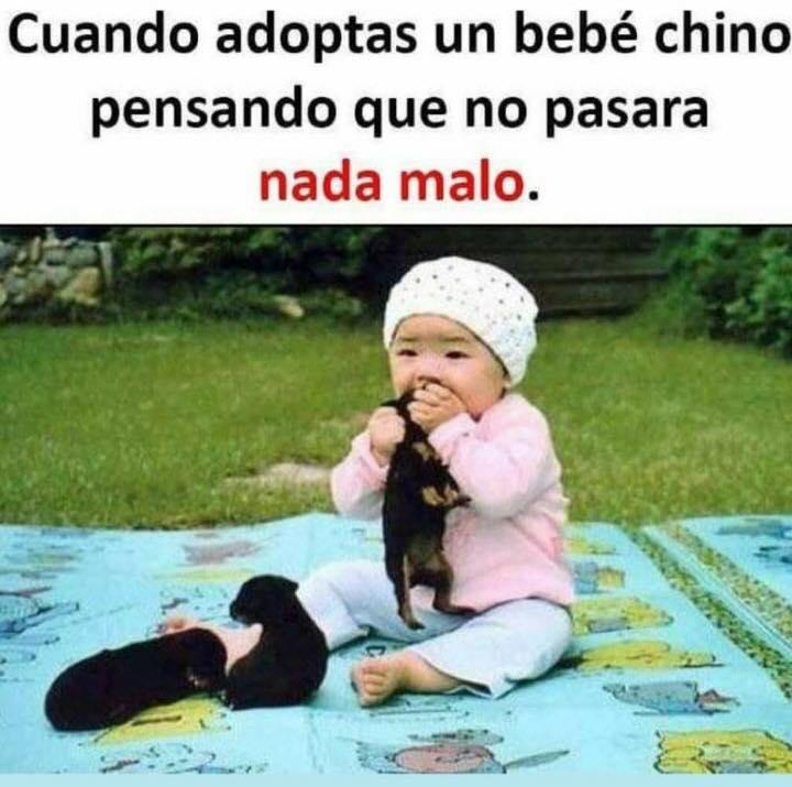Cuando adoptas un bebé chino pensando que no pasará nada malo.