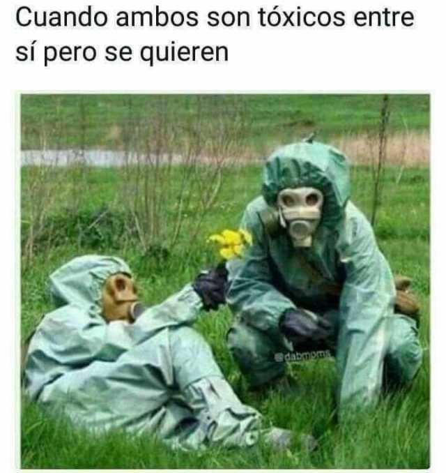 Cuando ambos son tóxicos entre sí pero se quieren.