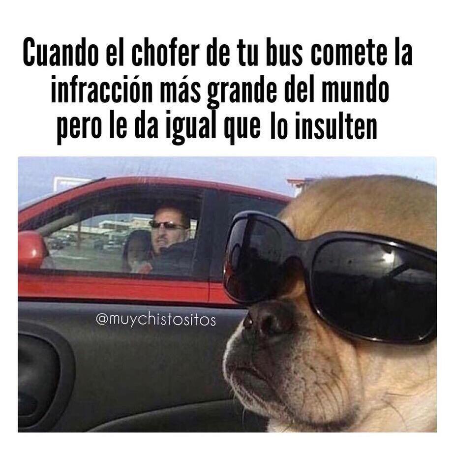 Cuando el chofer de tu bus comete la infracción más grande del mundo pero le da igual que lo insulten.