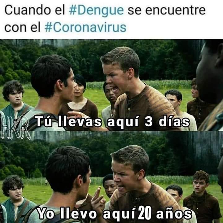 Cuando el #Dengue se encuentre con el #Coronavirus.  Tú llevas aquí 3 días.  Yo llevo aquí 20 años.