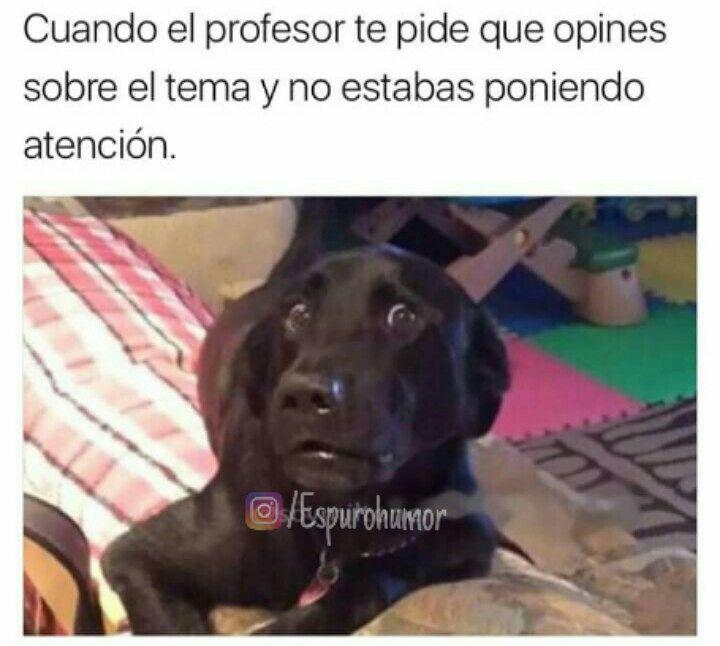 Cuando el profesor te pide que opines sobre el tema y no estabas poniendo atención.