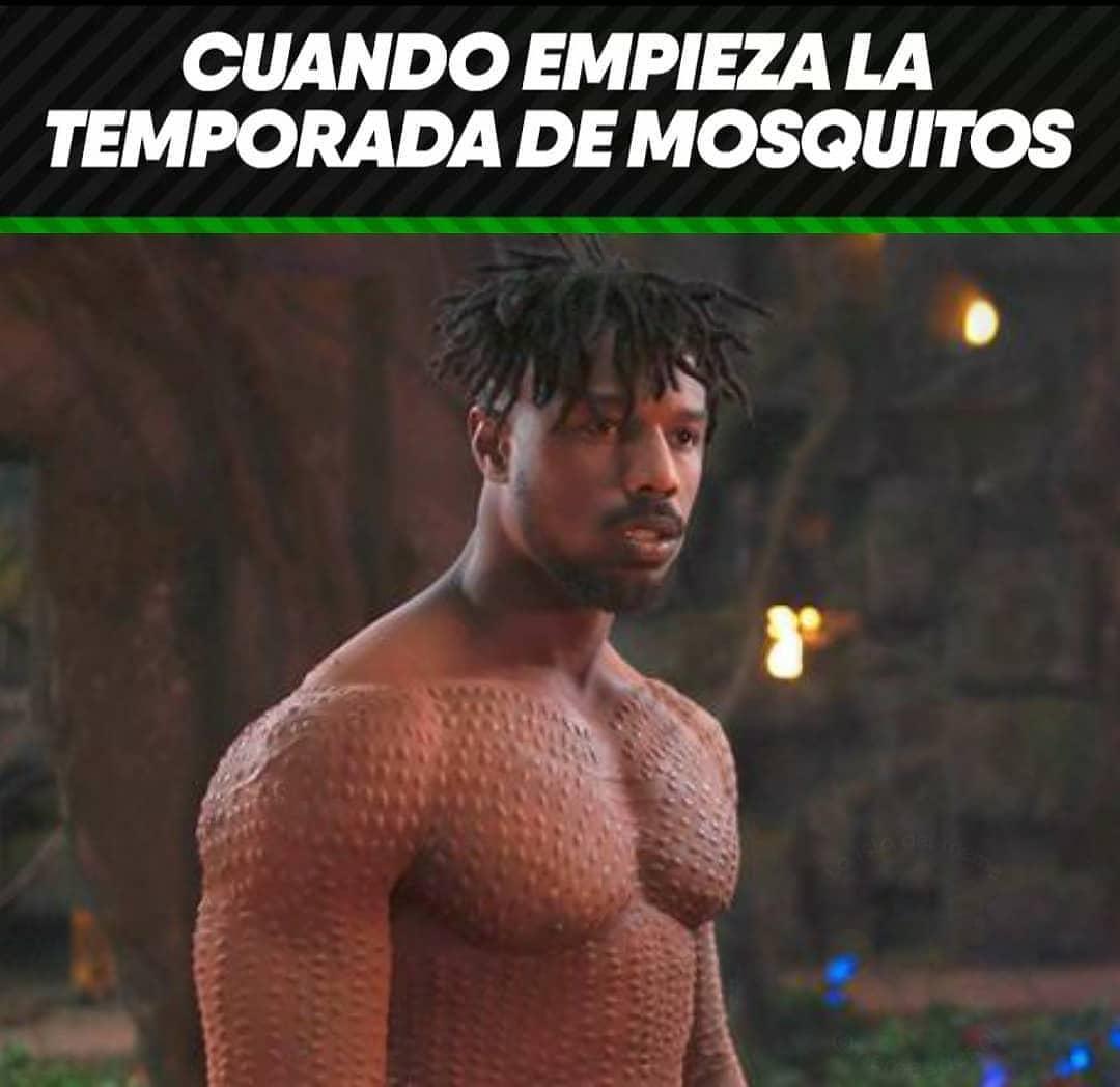 Cuando empieza la temporada de mosquitos.