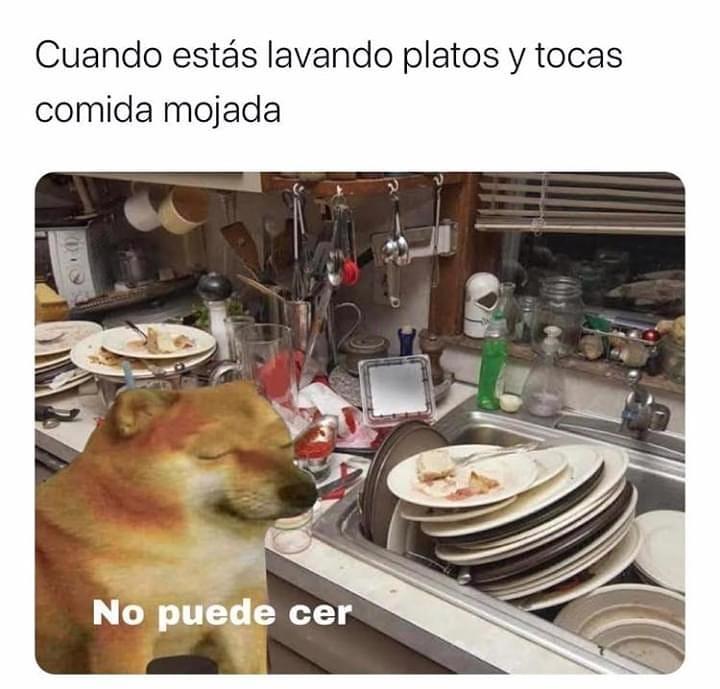 Cuando estás lavando platos y tocas comida mojada. No puede cer.