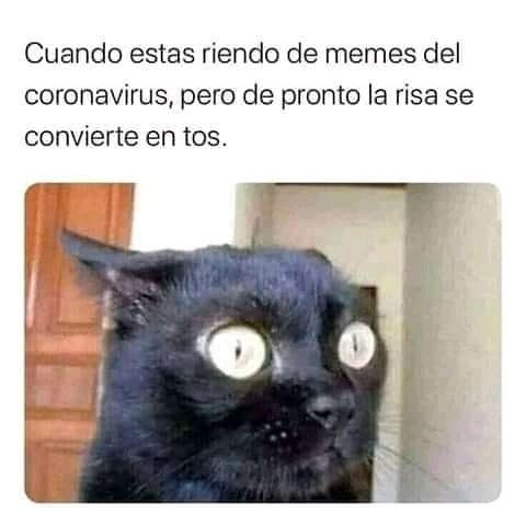 Cuando estas riendo de memes del coronavirus, pero de pronto la risa se convierte en tos.