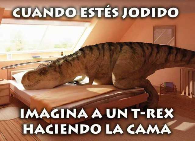 Cuando estés jodido.  Imagina a tu T-Rex haciendo la cama.