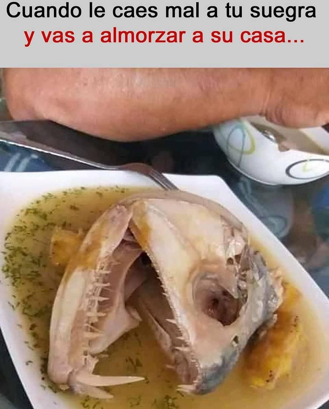 Cuando le caes mal a tu suegra y vas a almorzar a su casa...
