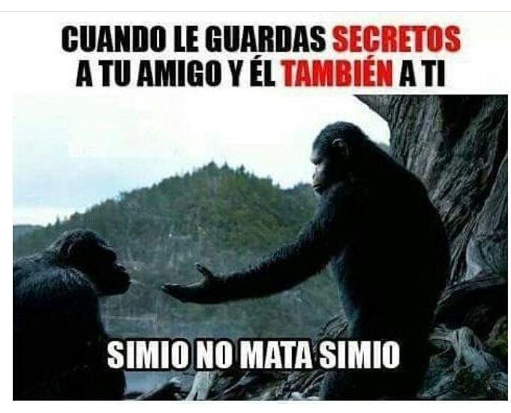 Cuando le guardas secretos a tu amigo, y él también a ti.  Simio no mata simio.