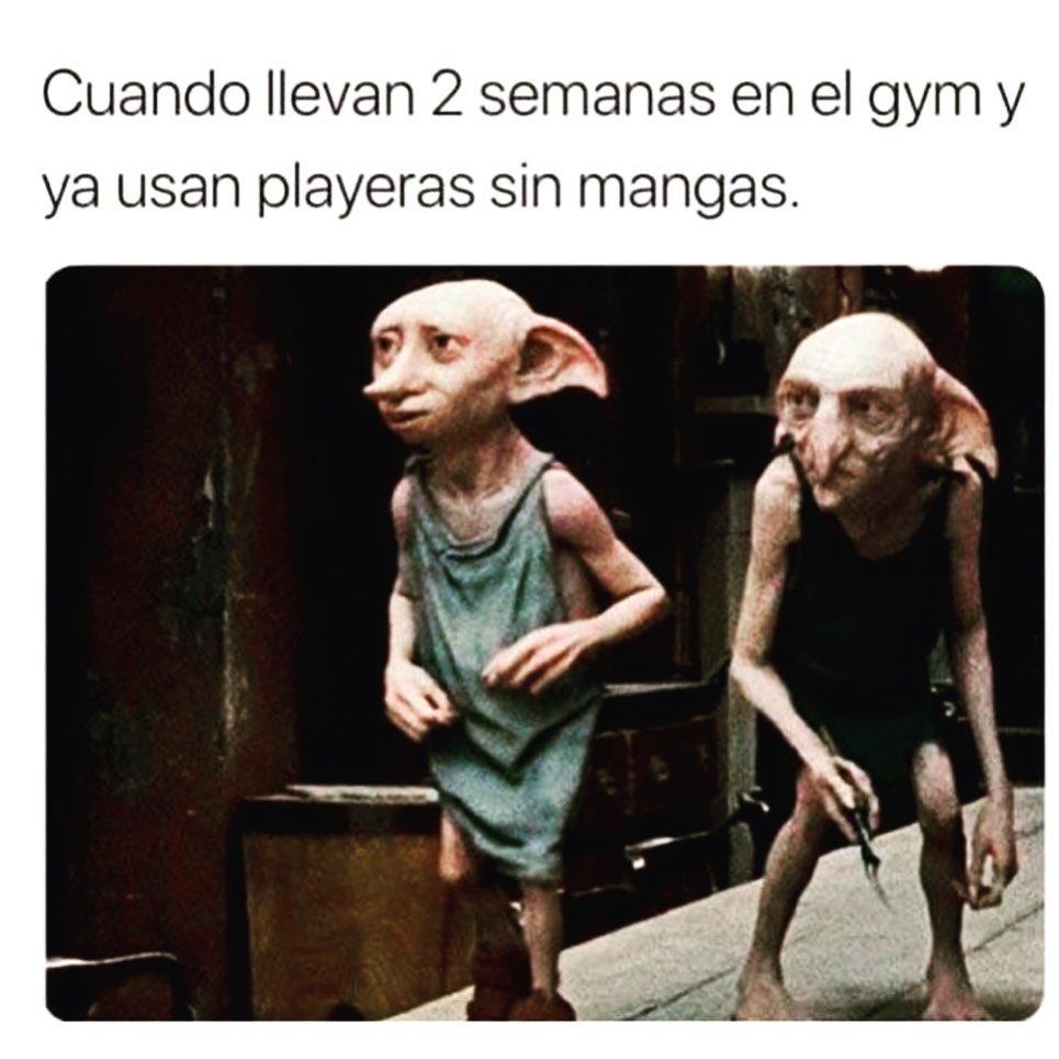 Cuando llevan 2 semanas en el gym y ya usan playeras sin mangas.