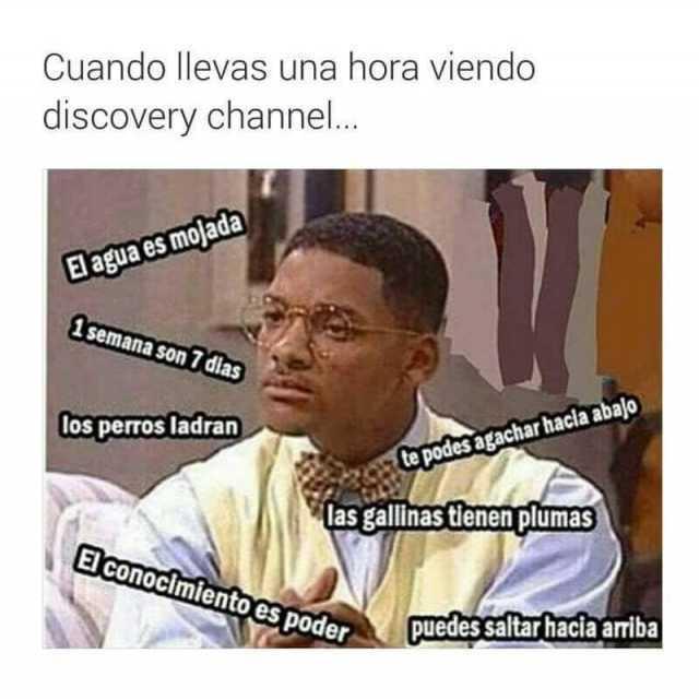 Cuando llevas una hora viendo discovery channel...
