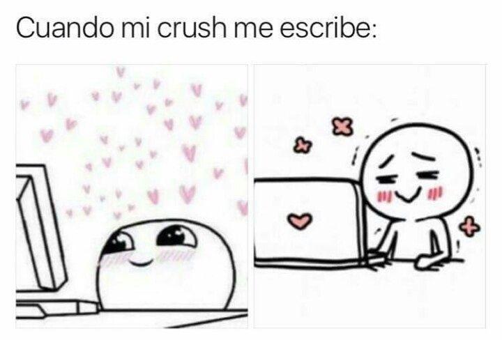 Cuando mi crush me escribe: