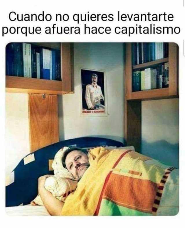 Cuando no quieres levantarte porque afuera hace capitalismo.