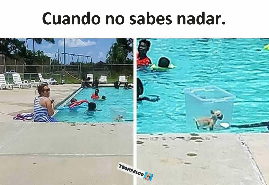 Cuando no sabes nadar.