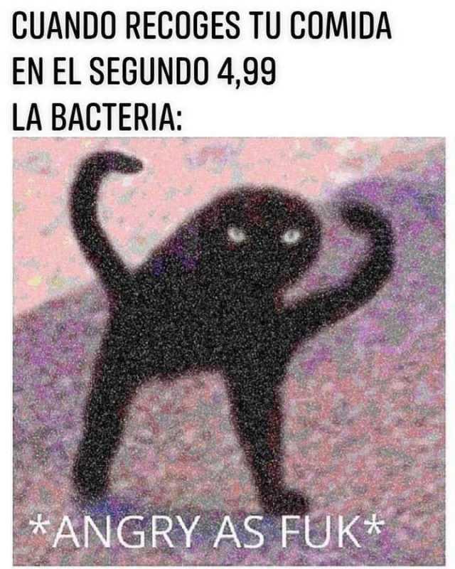 Cuando recoges tu comida en el segundo 4,99.  La bacteria: *Angry as fuk*