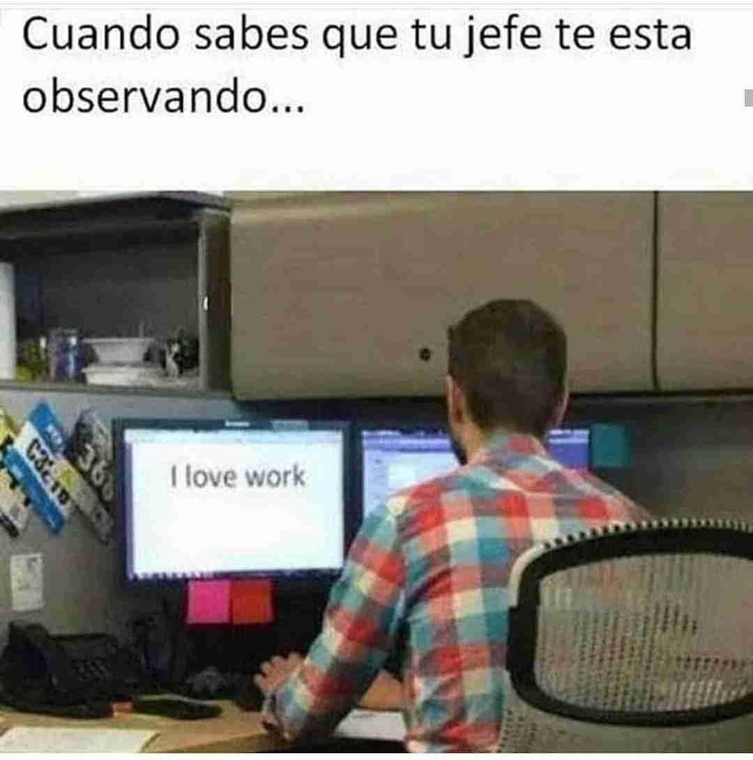 Cuando sabes que tu jefe te esta observando... I love work.