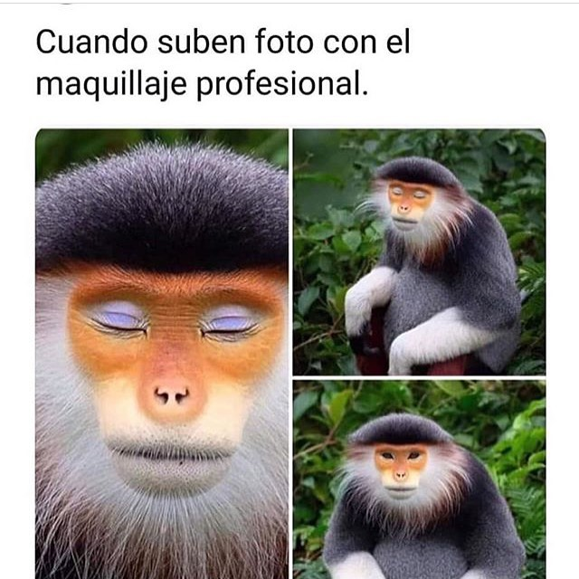Cuando suben foto con el maquillaje profesional.