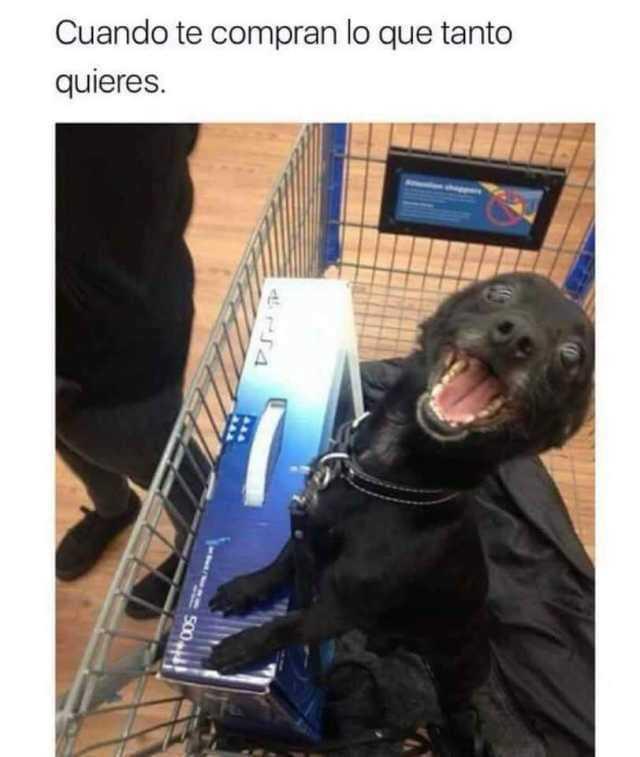 Cuando te compran lo que tanto quieres.